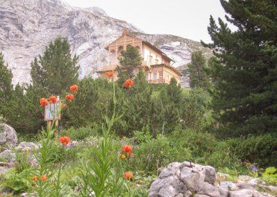 Botanischer Garten am Schachen Alpinium